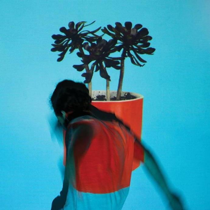 local-natives-sunlit-youth-art